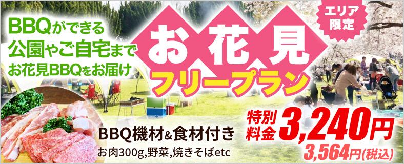大阪西中島のバーベキューレンタル店アップグリルの期間限定レンタルプラン_お花見フリープランSP