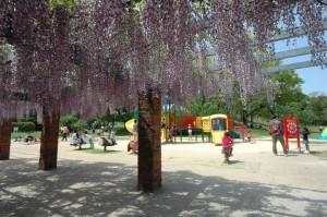 大浜公園3