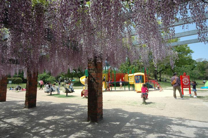 大原公園3