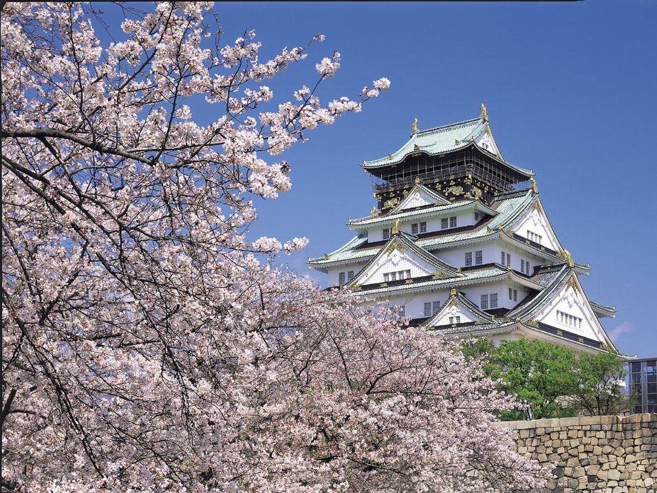 大阪城公園バーベキューエリアメイン画像