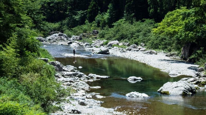 静かな川沿い