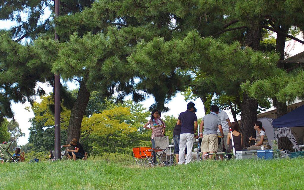 夏の服部緑地公園
