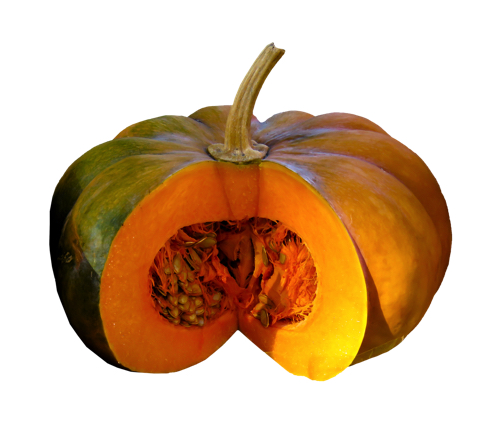 新鮮なかぼちゃ