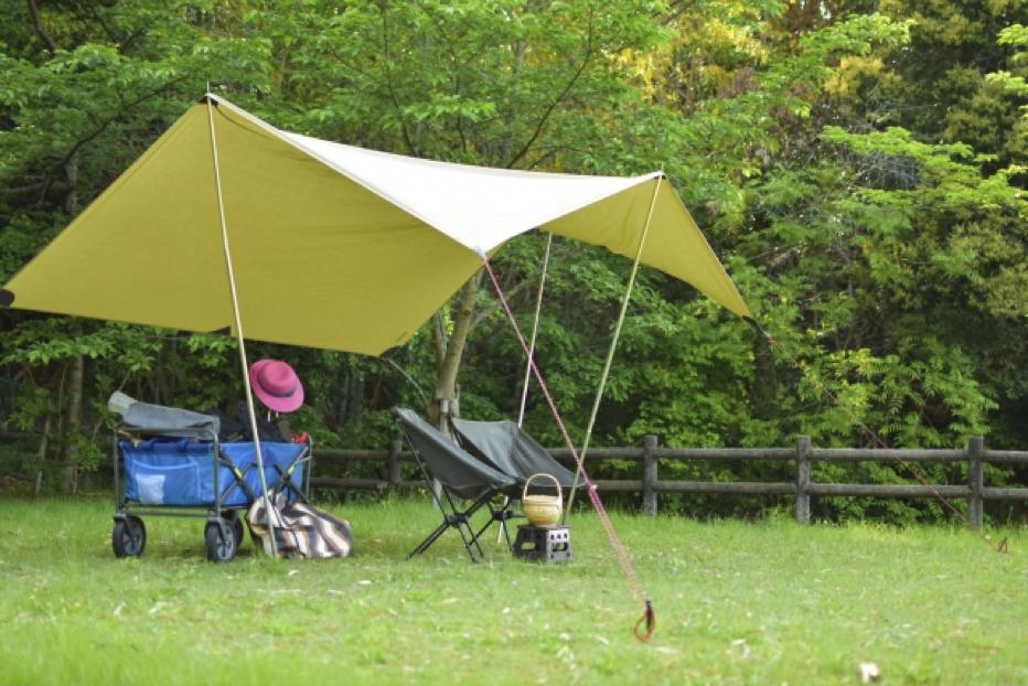 公園に設置してたタープ