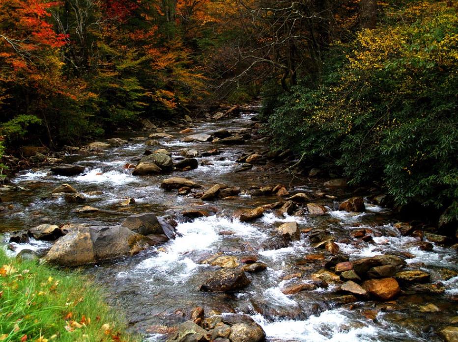 自然の中の渓谷
