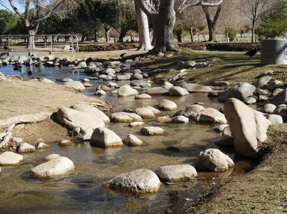 公園内の川