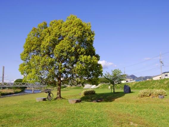 石川河川公園 駒ヶ谷地区メイン画像
